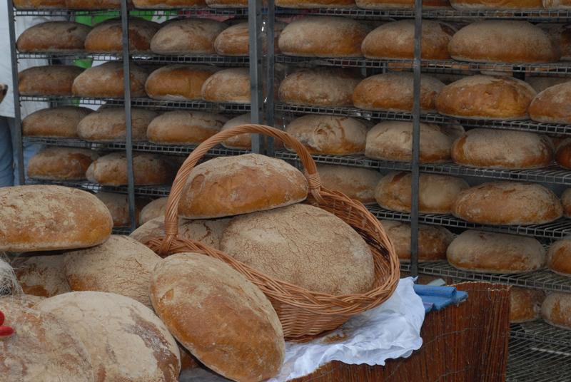XVI Międzynarodowe Dni z Doradztwem Rolniczym w Siedlcach