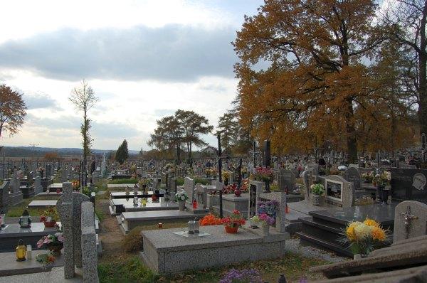 Cmentarz Czernichów, Wołowice