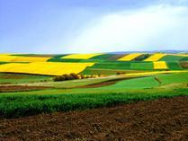 Rozporządzenie dot. Programu rolnośrodowiskowego