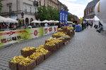 13. Cracovia Maraton strefa odżywcza.JPG