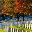 Papieros na grobie Morrisona i mieszkanie na cmentarzu. Odkryj jedne z najbardziej zadziwiających nekropolii świata